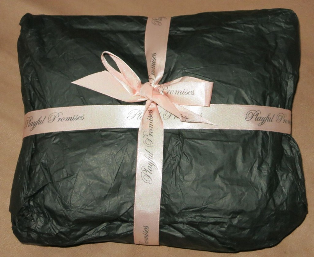 Playful Promises - Review Everyday Boudoir